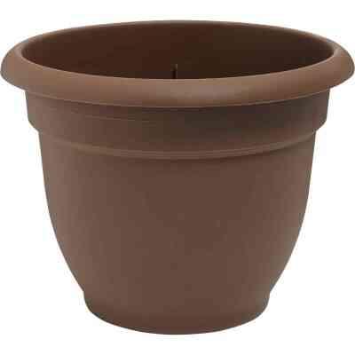 Bloem Ariana 10 In. Plastic Self Watering Chocolate Planter