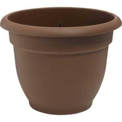 Bloem Ariana 12 In. Plastic Self Watering Chocolate Planter