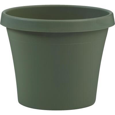 Bloem Terra Living Green 5.5 In. H. x 6 In. Dia. Polypropylene Planter